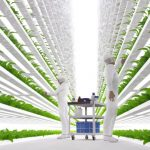 บริการออกแบบและพัฒนาระบบฟาร์มสมัยใหม่